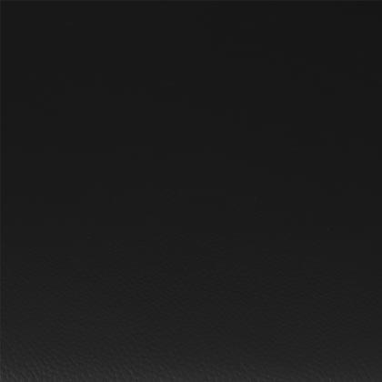 Croûte de cuir noir