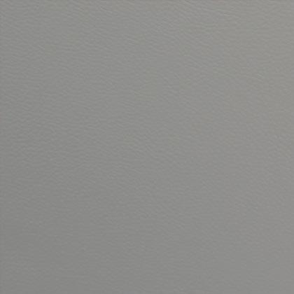 Croûte de cuir gris
