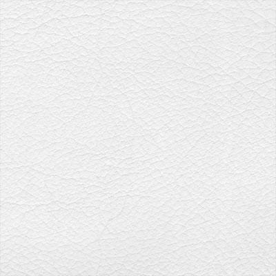Synthétique - Ekos blanc