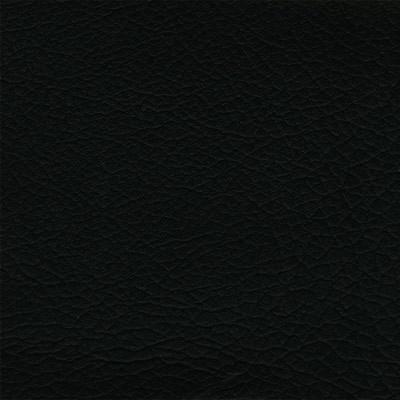 Synthétique - Ekos noir